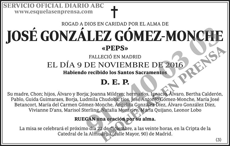 José González Gómez-Monche